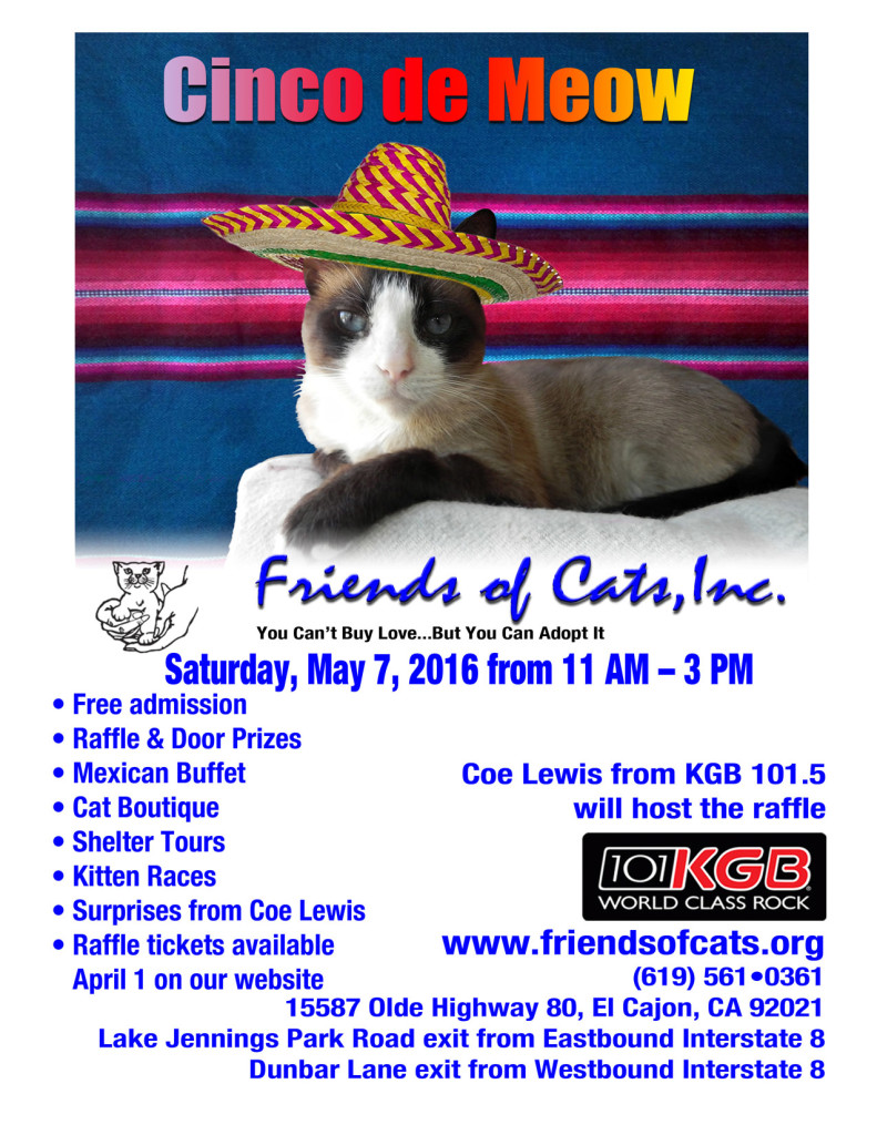 Join Coe this Saturday May 7th at Friends of Cats