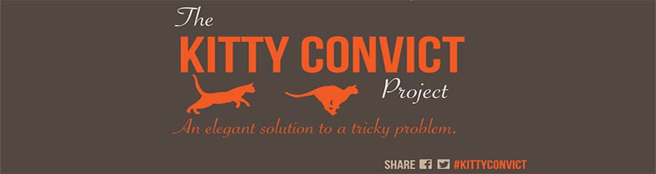 Kitty Convict Project